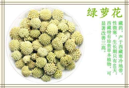 西藏野生的绿萝花茶